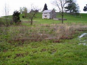 homestead 1